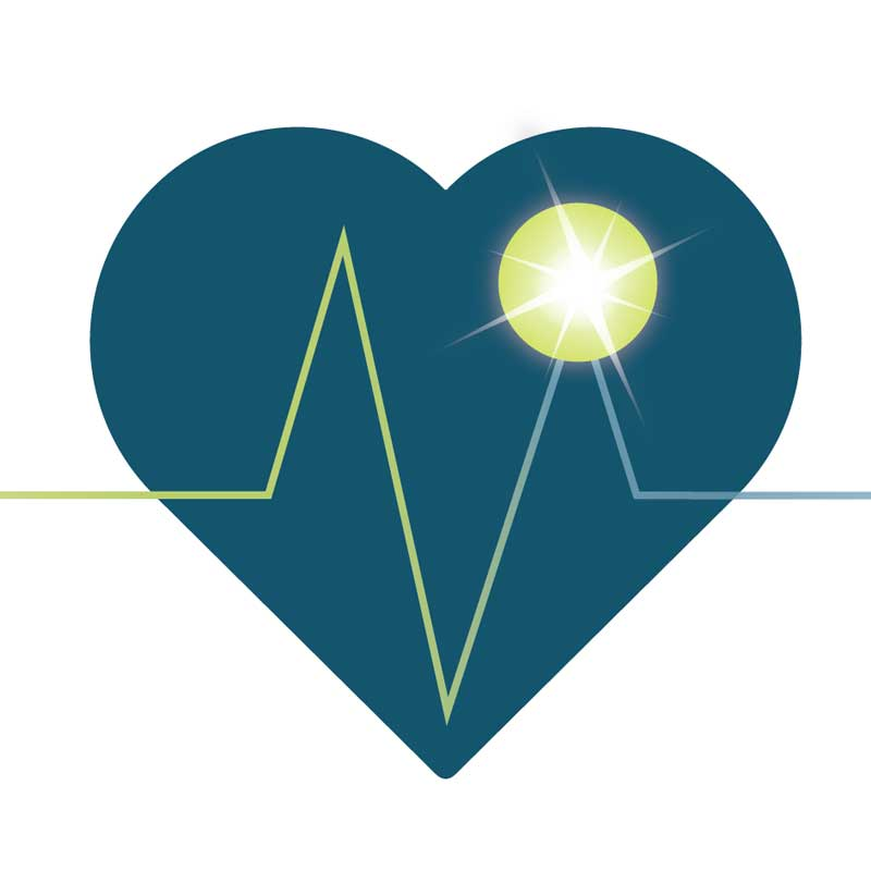 Life Care Consultants Logo