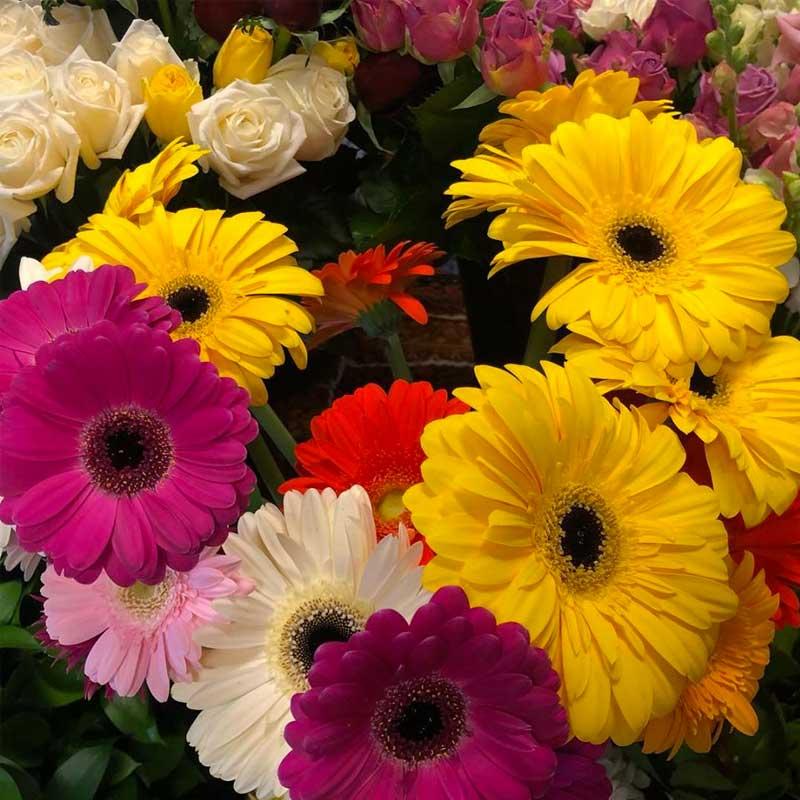 Flower Bazaar